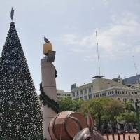 Guayaquil encenderá árbol de navidad sin público presente