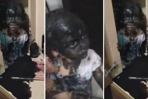https://www.metrojornal.com.br/social/2020/11/26/mae-registra-filha-fazendo-estripulia-e-video-se-torna-viral-nas-redes-sociais-lorena.html