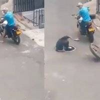 ¡Karma instantáneo! Ladrón roba tapa de coladera y al intentar huir, cae por la alcantarilla