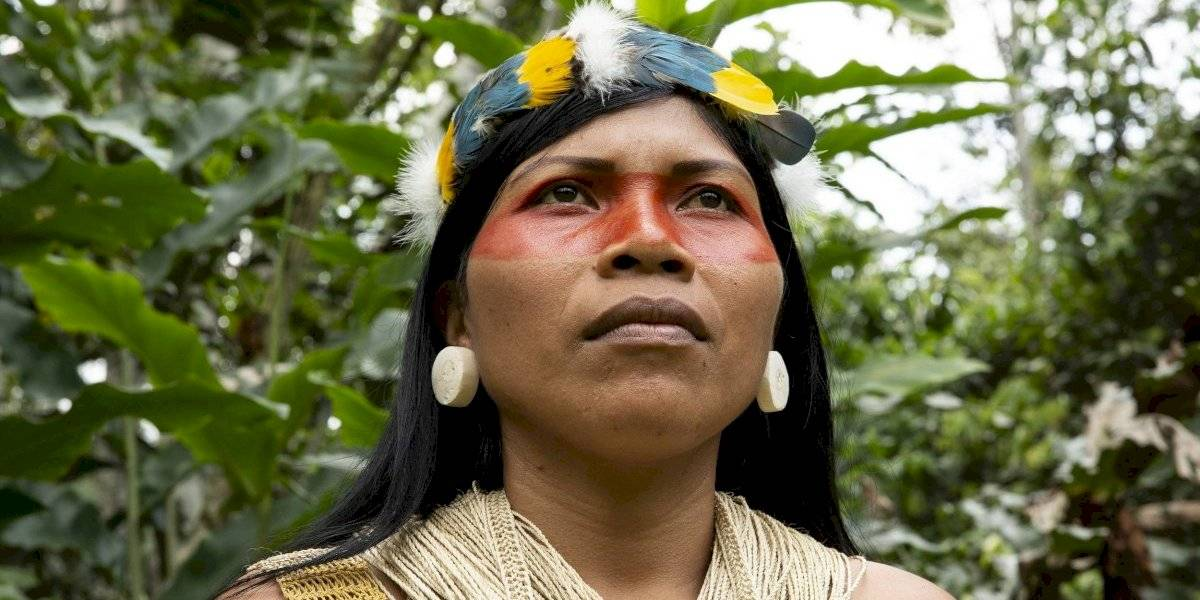 Nemonte Nenquimo, líder waorani gana Premio Medioambiental Goldman 2020