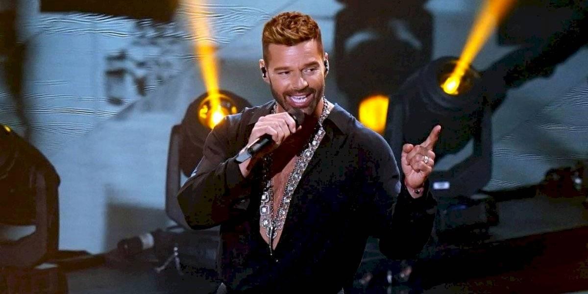 Bienes Nacionales investigará por qué Ricky Martin apareció como pareja de un funcionario en Wikipedia