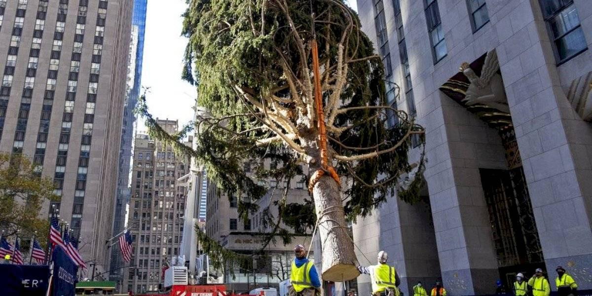 Encenderán árbol de Navidad en Nueva York sin público