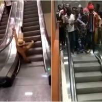 Primeras escaleras eléctricas en Camerún provocan accidentes