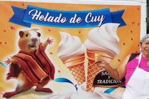 https://www.metrojornal.com.br/social/2020/12/03/empresaria-cria-sorvete-sabor-porquinho-da-india-e-faz-sucesso.html