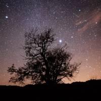 Video: lluvia de estrellas de las Gemínidas 2020, la última del año, ¿aún se podrá ver?