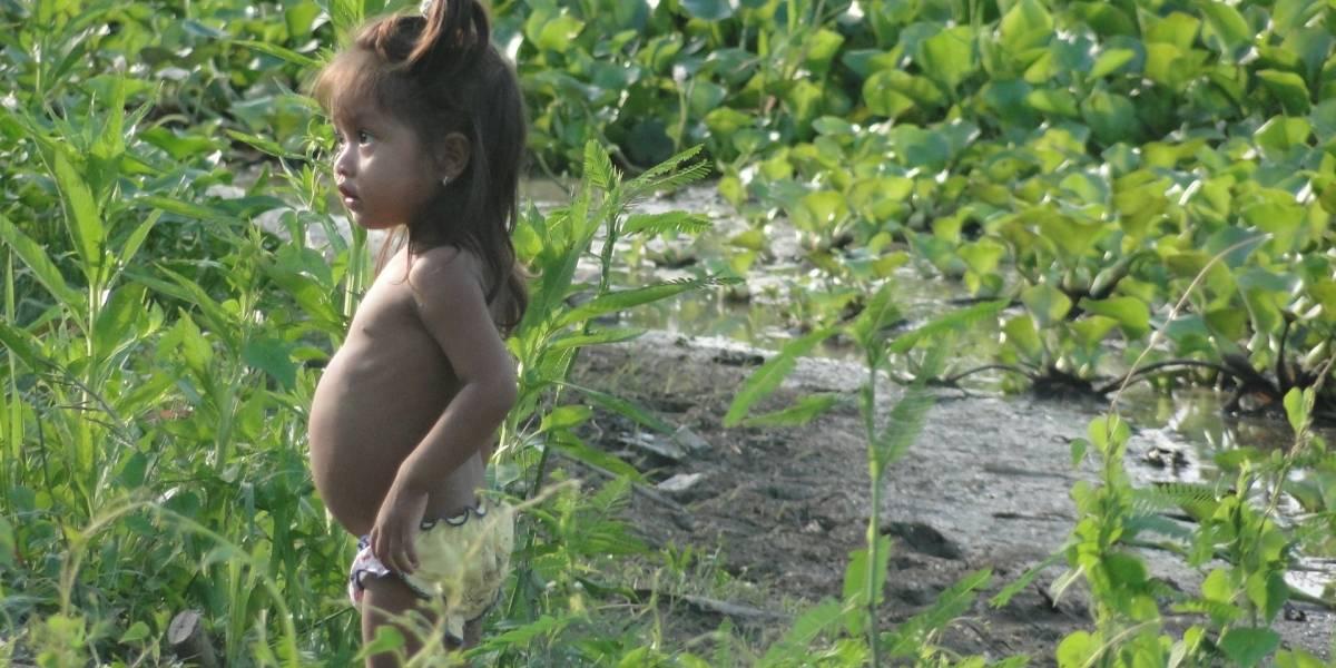 Amazonas místico, una joya turística de Colombia