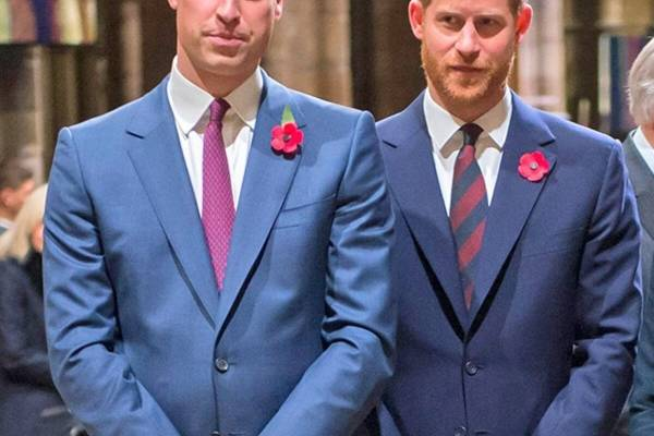 Por fin se hablan: príncipes William y Harry se reconciliaron