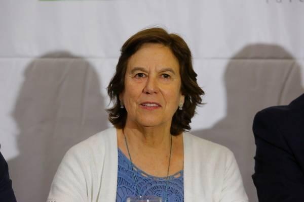 Mariana Aylwin confirma su precandidatura a la Convención Constituyente