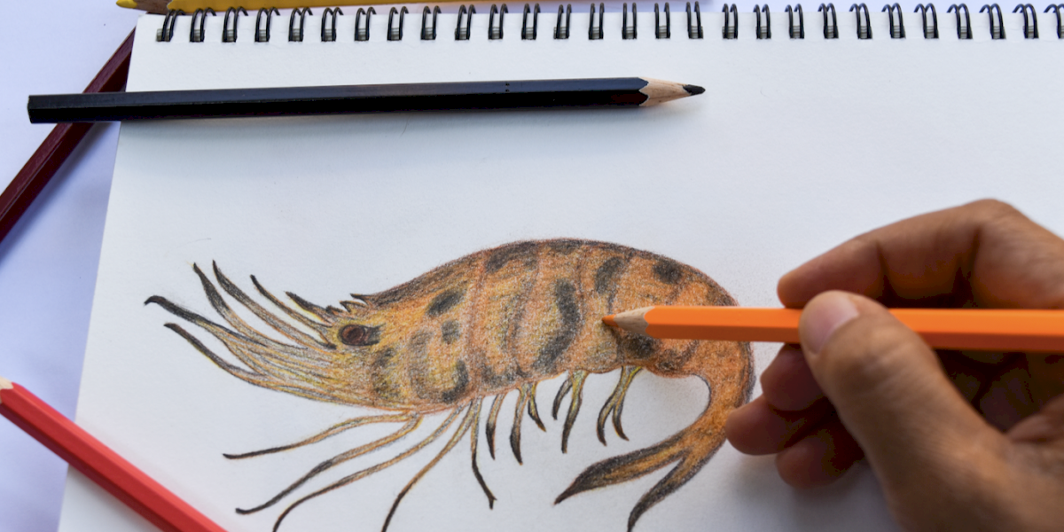Ahora los niños podrán divertirse en la pandemia creando dibujos de comida en aplicación móvil