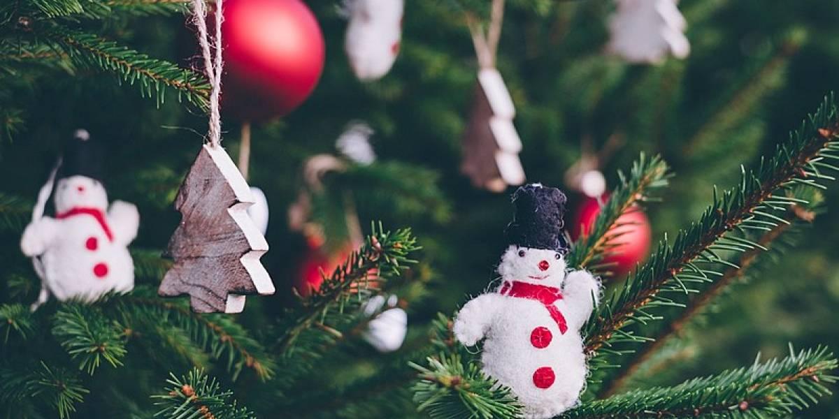 La ciencia puede ayudarte a cocinar un pavo perfecto para Navidad, aquí te decimos cómo