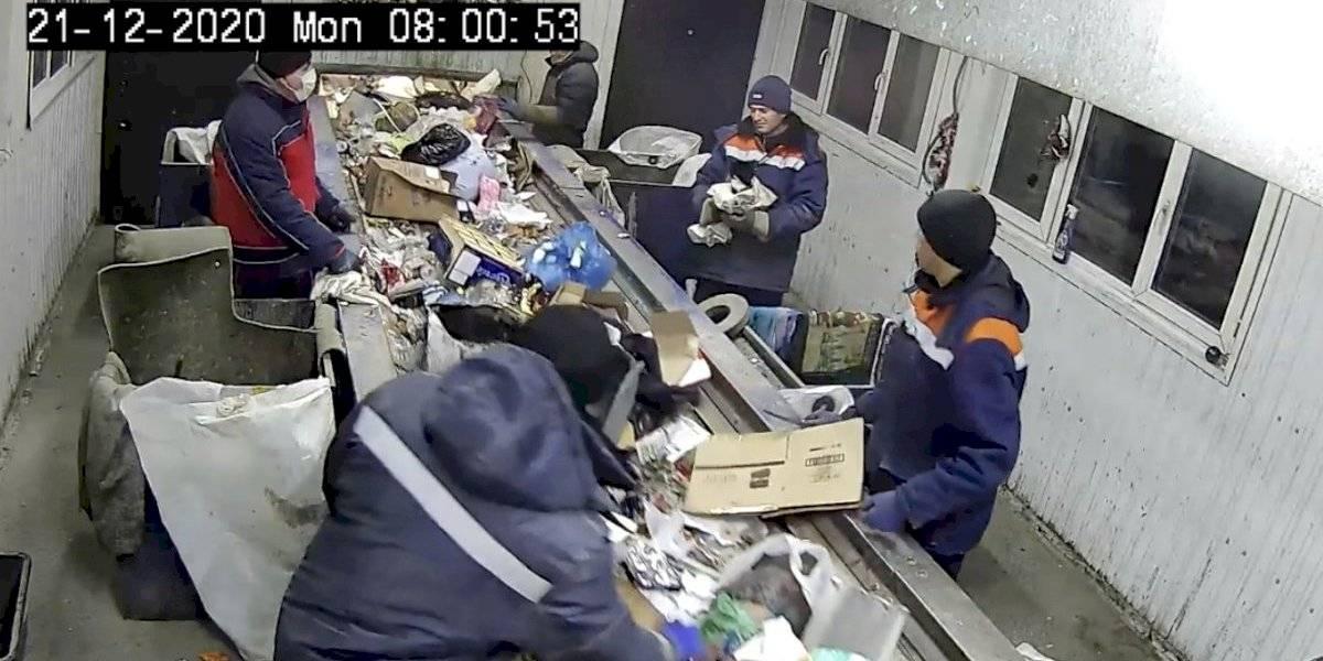 Milagro navideño: trabajador salva a gatito de ser triturado junto a la basura