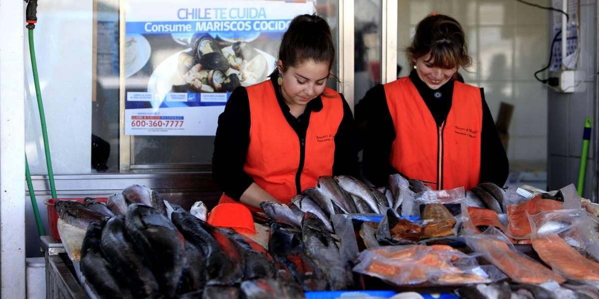 """""""Caleta en Línea"""": nuevo portal pemite comprar pescado a los pescadores artesanales"""