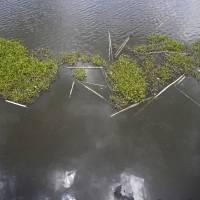 Vuelve a quedarse en el tintero el dragado del lago Carraízo
