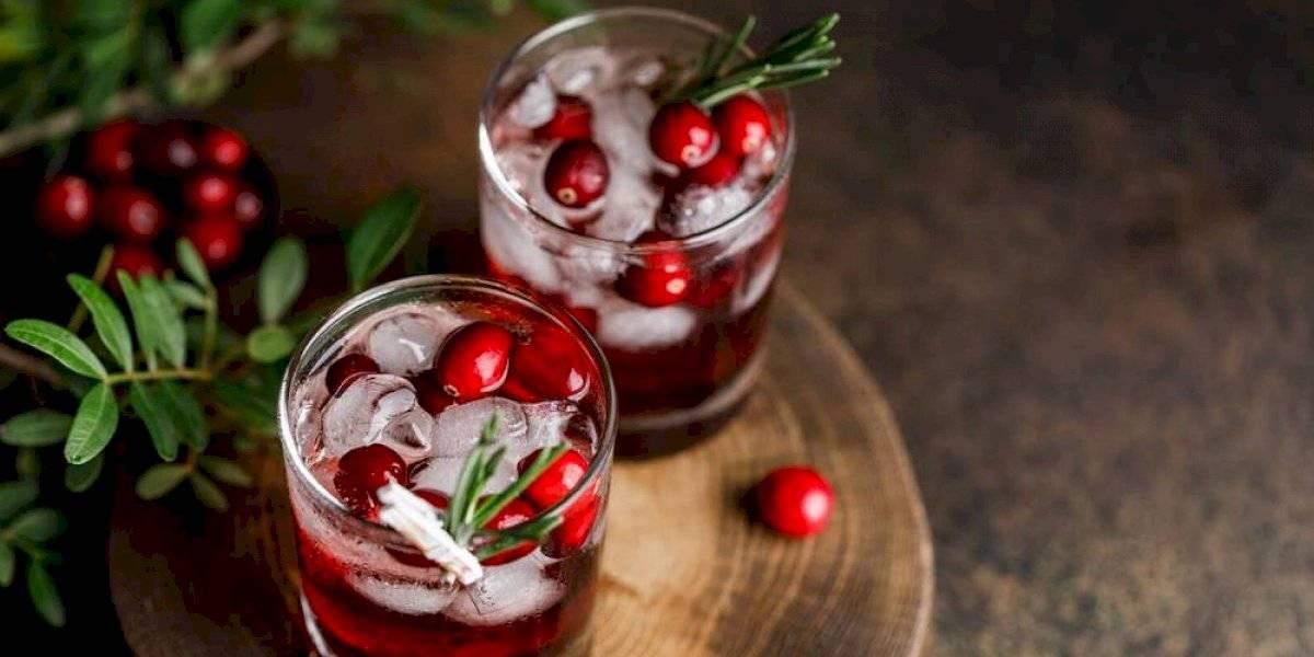 Tragos de Navidad: lúcete con tus invitados con estos cócteles