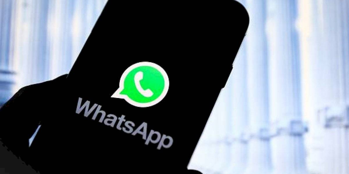 WhatsApp: paso a paso para crear un GIF en la aplicación