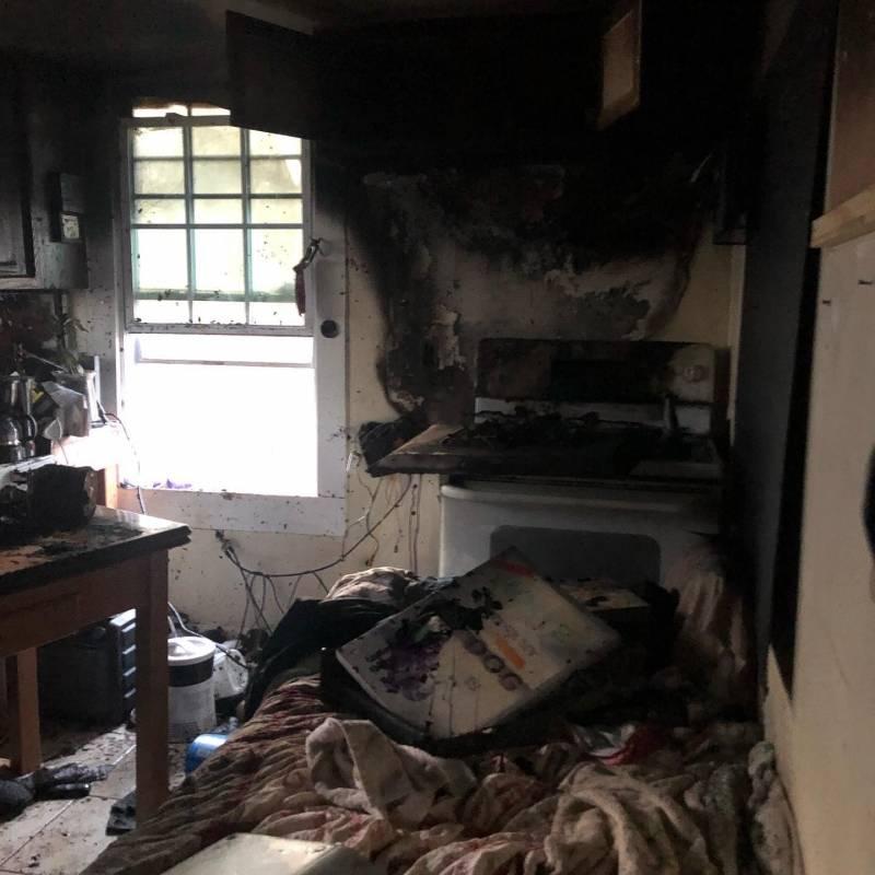 Vagabundo salvó a todos los perros y gatos durante incendio de refugio de animales