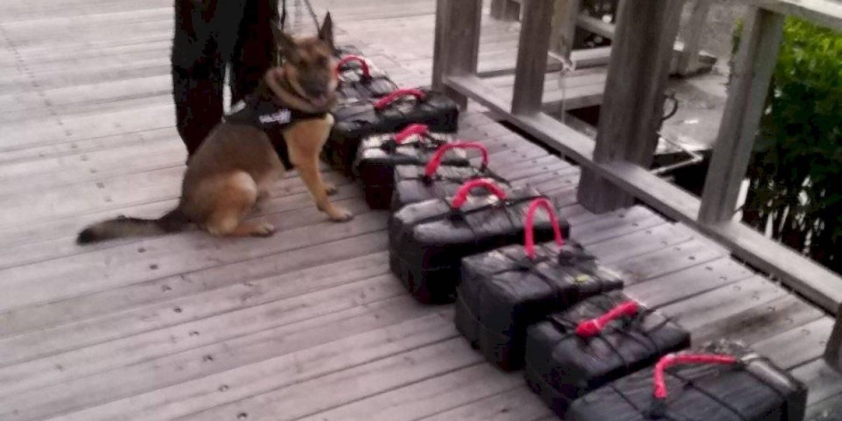 Incautan más de 200 bloques de cocaína en bote abandonado cerca de La Parguera