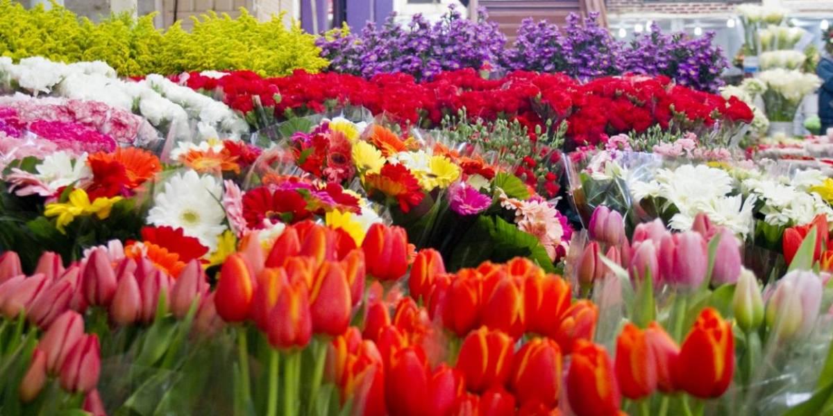 Mercado de las flores, el más grande de América Latina