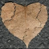 Estos son los signos del zodiaco que provocan marcadas decepciones en el amor