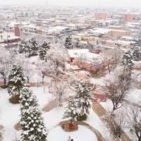 Las nevadas llegaron a Chihuahua y dejaron hermosas imágenes