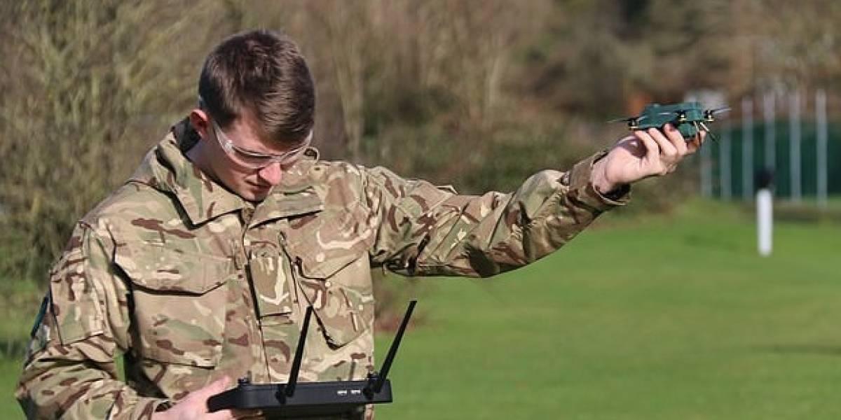 Drones británicos del tamaño de un insecto son capaces de espiar al enemigo a más de 1 kilómetro de distancia