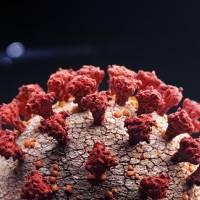 Hallan coronavirus en repuestos de automóviles en fábrica localizada en China