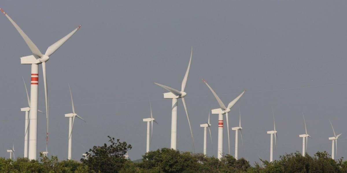 CFE culpa a energías renovables por mega apagón; pedirá limitar su operación