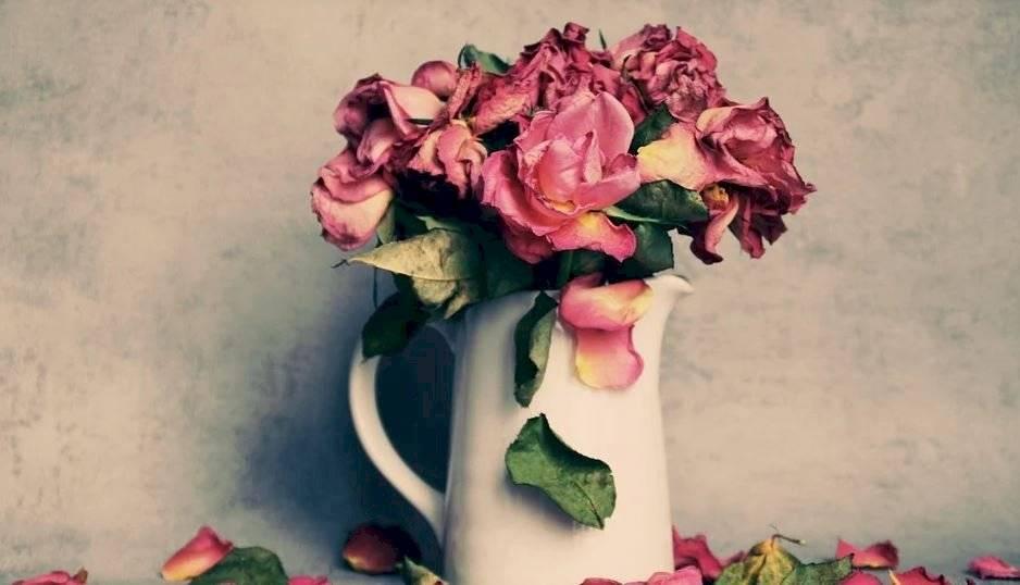 Para aromatizar puedes usar las flores secas, la lavanda, bicarbonato de sodio y vinagre de manzana.