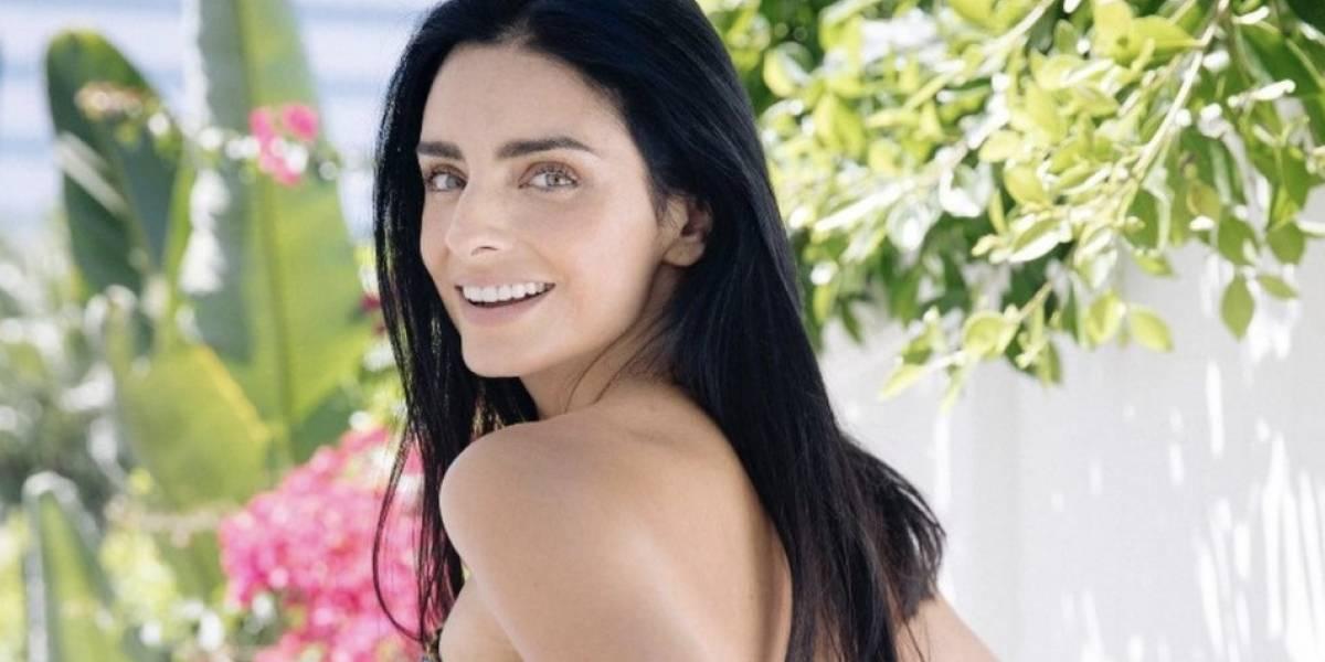 Divorciada, pero no sola: Conoce al nuevo novio de Aislinn Derbez