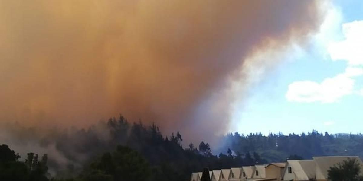 La Araucanía: Onemi solicitó evacuar Villa Esmeralda por el peligro de un gran incendio forestal en desarrollo