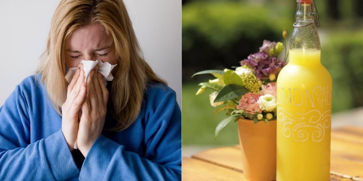 Suco detox para combater alergias e aumentar as defesas do organismo