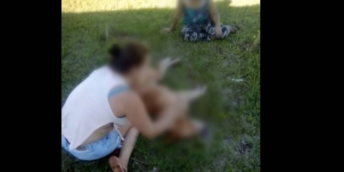 Horrendo: adolescentes se grabaron sacándole los ojos a un perro con un palo, mientras reían