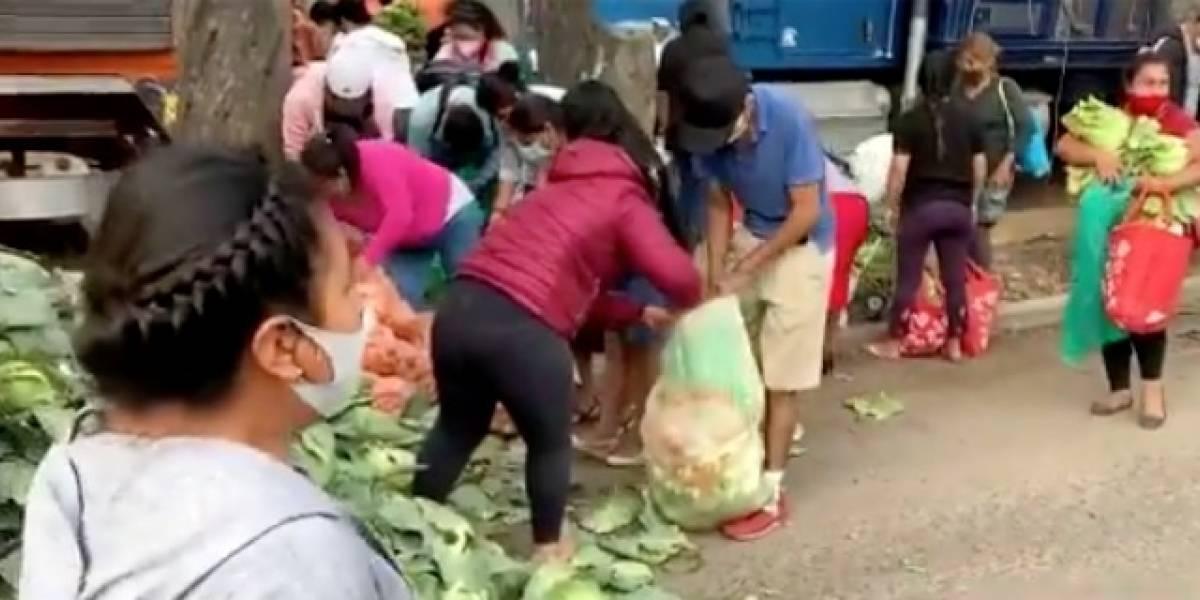 Agricultores regalan 200 toneladas de verdura a personas de escasos recursos en Oaxaca