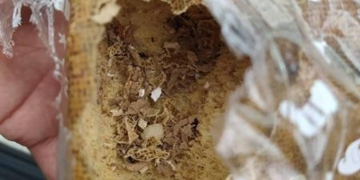 Casal aciona polícia após encontrar fezes de rato em caixas de panetone em supermercado na Praia Grande