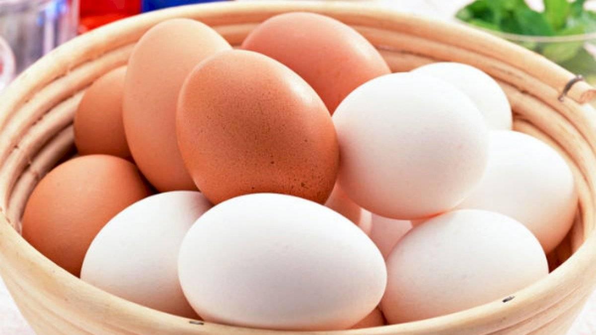Los huevos son ricos en proteínas y bajos en grasa.