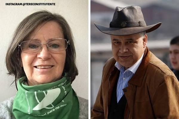 Teresa Valdés y Aldo Duque : los candidatos a la Convención Constituyente que no fueron