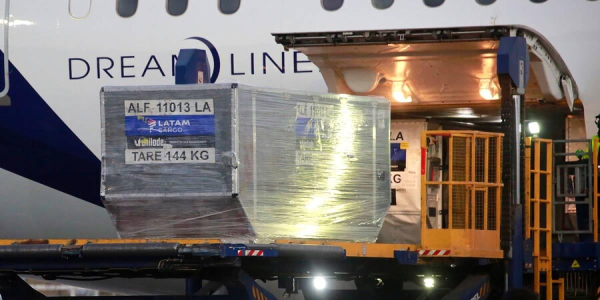 Llega a Chile nuevo cargamento con 88 mil vacunas Pfizer contra el covid-19