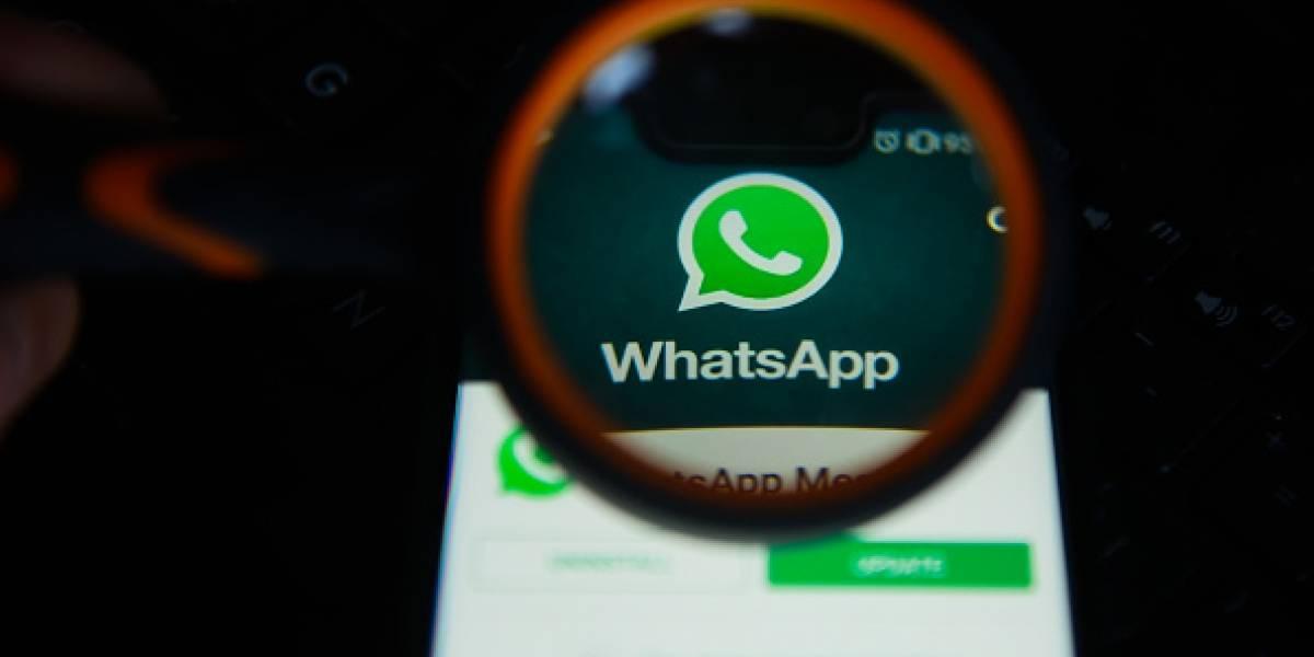 WhatsApp y su nueva función de seguridad para la versión web y de escritorio
