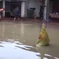 Declaran estado de alerta en Bolivia por intensas lluvias e inundaciones