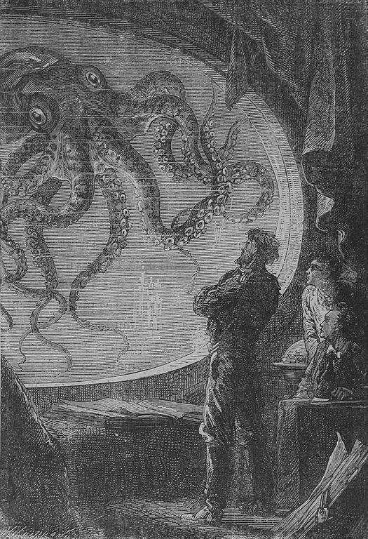 Pulpo y Nautilus