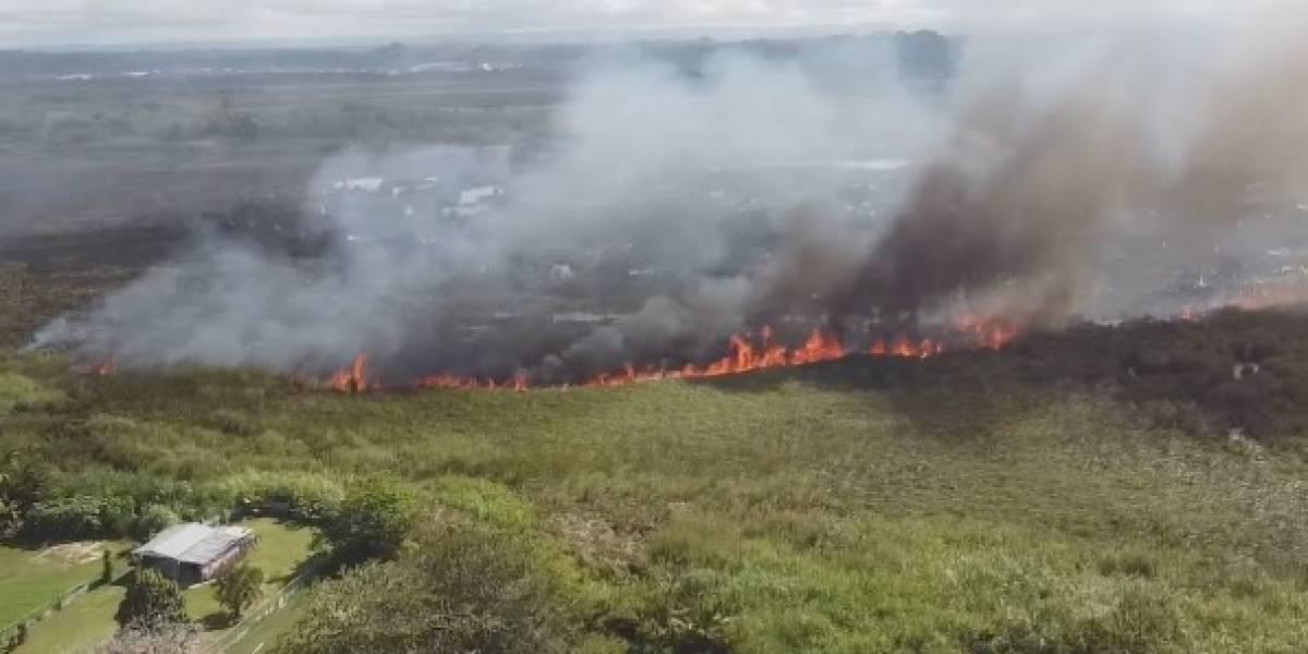 Bomberos trabajan con fuego forestal en Vega Baja