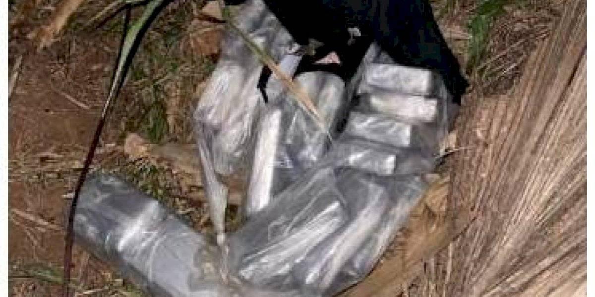 Incautan cargamento de cocaína valorado en casi $2 millones en Isabela