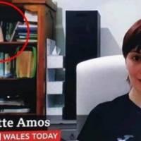 Vídeo: mulher esquece pênis de borracha em estante durante entrevista ao vivo para a TV