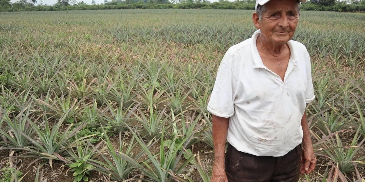 Ecuador.- Un proyecto de desarrollo impulsado por la AECID en Ecuador, nominado a los 'Óscar de la sostenibilidad'