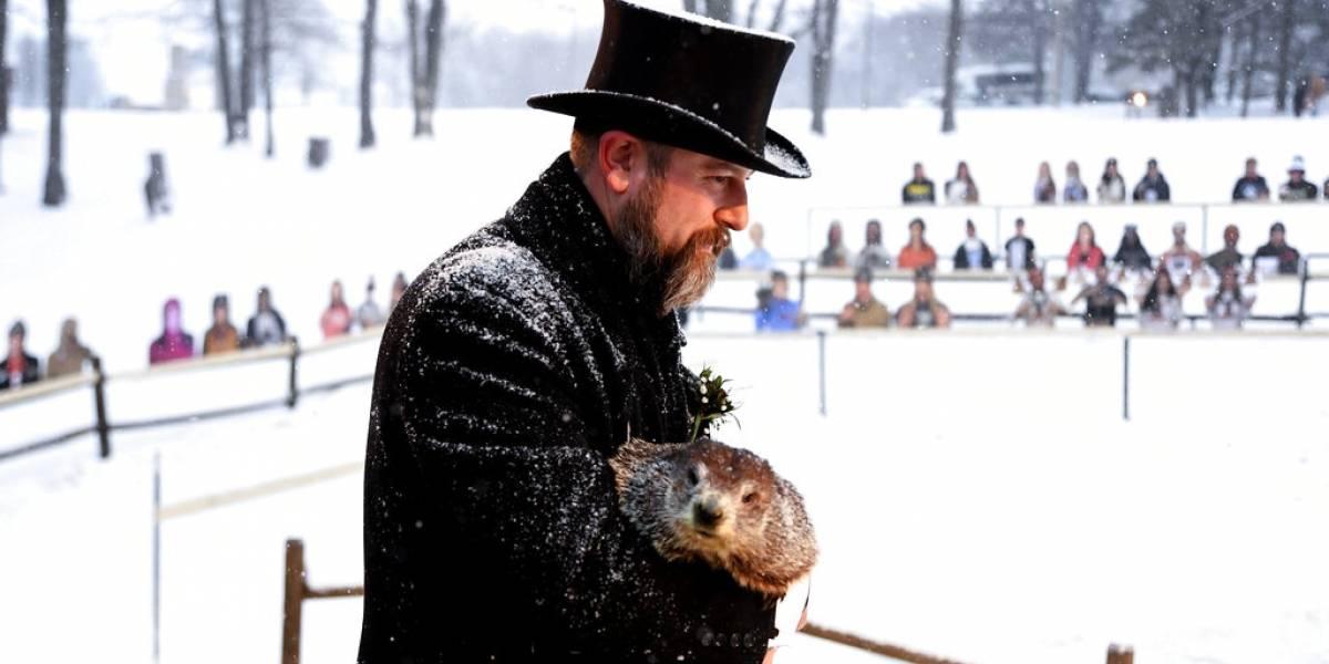 Icónica marmota pronostica más invierno en Estados Unidos