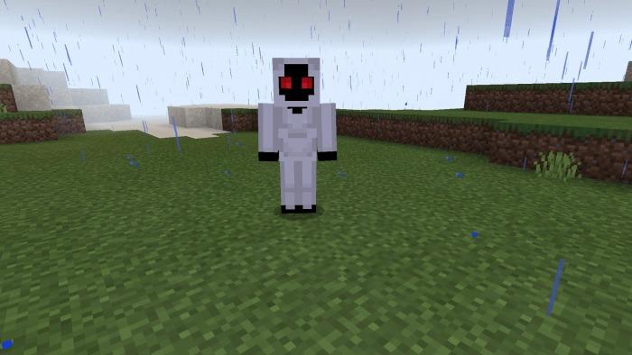 Minecraft Herobrine Entity 303