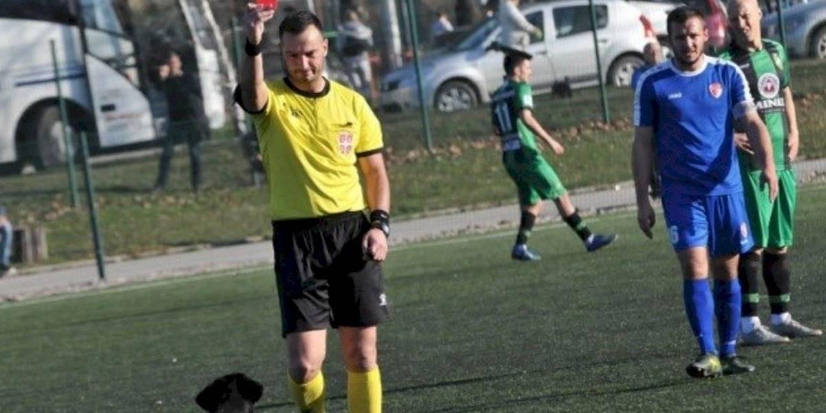 Árbitro expulsa a perro tras interrumpir partido de futbol