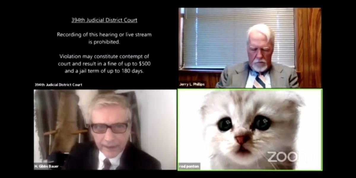 """""""Eu não sou um gato!"""": advogado ativa filtro por acidente durante julgamento via Zoom"""