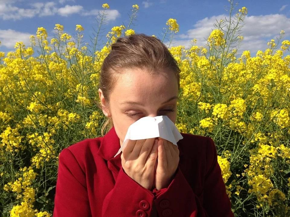 Polen Alergias