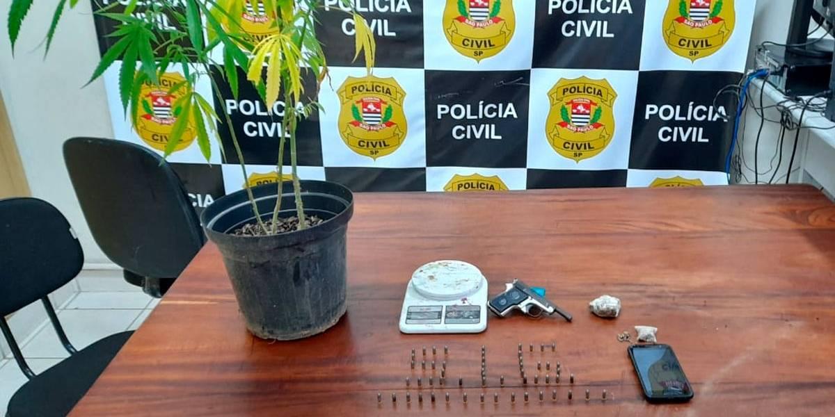 Polícia flagra plantação de maconha em casa em Ubatuba